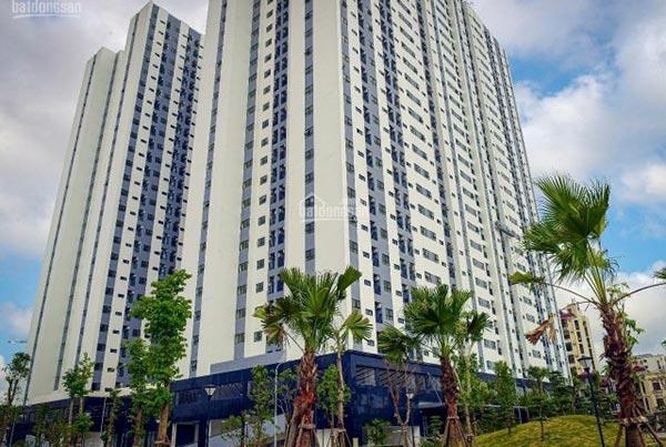 Lắp đặt mạng FPT tại chung cư ở Hải Phòng